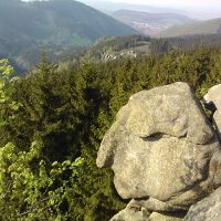 Der Alte vom Berge